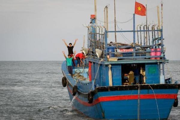Provincia vietnamita de Binh Duong por erradicar la pesca ilegal en abril proximo hinh anh 1