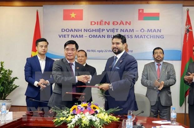 Intercambio comercial Vietnam-Oman reporta alto crecimiento hinh anh 1