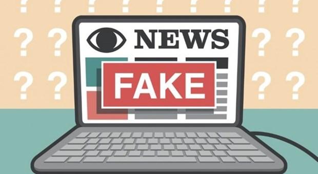 Parlamento de Malasia discute proyecto de ley contra informacion falsa hinh anh 1