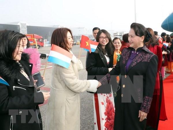 Presidenta del Parlamento de Vietnam inicia vista a Paises Bajos hinh anh 1