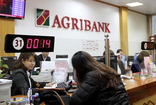 Destacan aportes de Agribank para garantizar seguridad alimentaria en Vietnam hinh anh 1