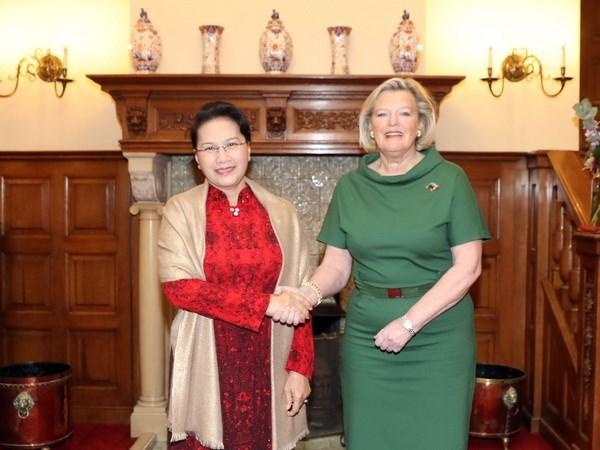 Vietnam espera nexos mas estrechos con Holanda hinh anh 1