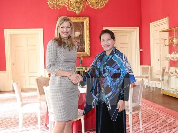 Presidenta del Parlamento de Vietnam continua actividades en Paises Bajos hinh anh 1