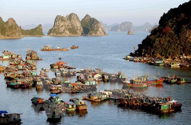 Provincia vietnamita de Quang Ninh atrajo a casi cinco millones de turistas en primer trimestre hinh anh 1