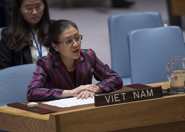 Vietnam acoge con satisfaccion esfuerzos en construccion de la paz hinh anh 1