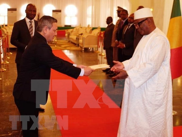 Presidente de Mali reitera deseo de fortalecer cooperacion con Vietnam hinh anh 1