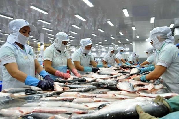 Pescados Tra de Vietnam cumplen dificiles demandas de Estados Unidos hinh anh 1
