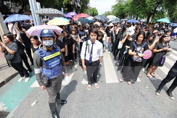 Partidos politicos en Tailandia comienzan actualizacion de sus miembros hinh anh 1