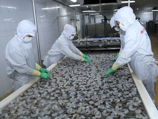 Vietnam: Exportacion acuicola asciende a mil 700 millones de dolares en primer trimestre hinh anh 1