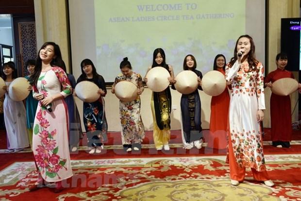 Celebran Dia de la Cultura vietnamita en Egipto hinh anh 1