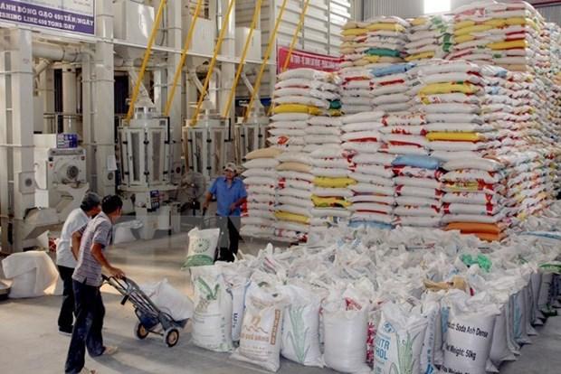 Creciente demanda de mercados principales favorecera ventas vietnamitas de arroz hinh anh 1