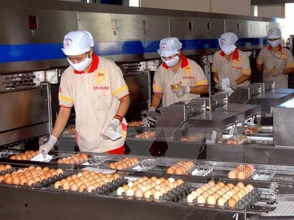 Vietnam no aplica cuotas a importaciones de sal y huevos de ASEAN hinh anh 1