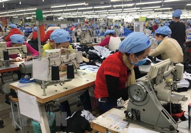 Vietnam: Sector de Confecciones disfruta de buen comienzo para alcanzar su meta del ano hinh anh 1