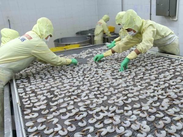 Vietnam busca soluciones contra devolucion de productos acuicolas del extranjero hinh anh 1