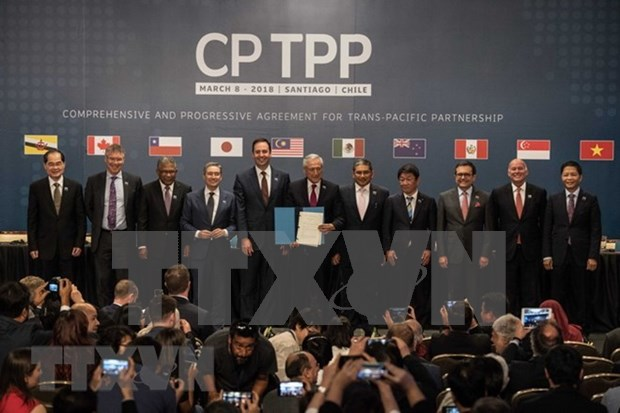 Japon listo para acoger reunion de jefes negociadores del CPTPP hinh anh 1
