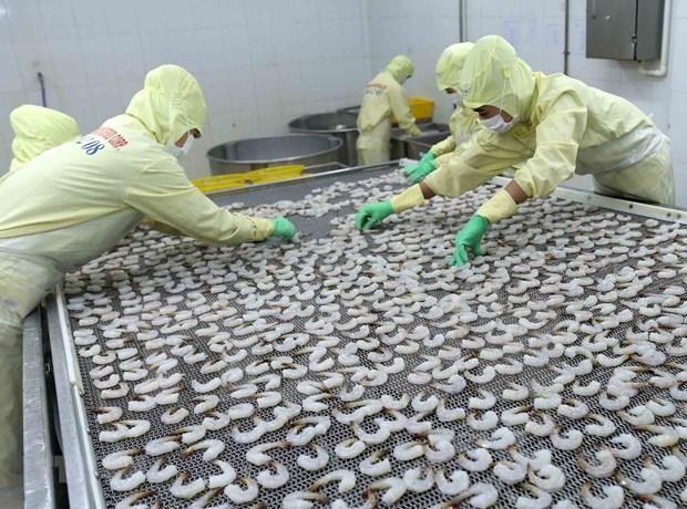 Vietnam por mantener desarrollo estable de acuicultura hinh anh 1