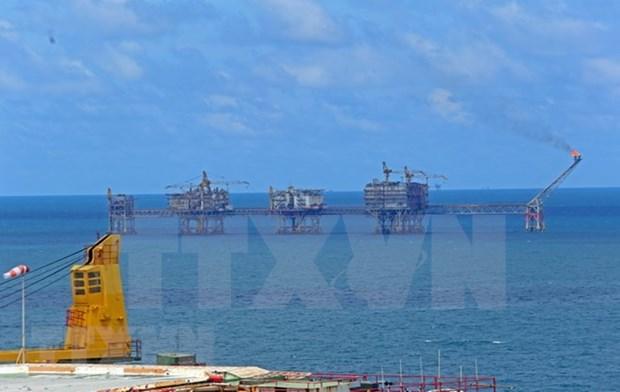 Vietnam es mercado potencial de empresas rusas, sostienen en foro empresarial hinh anh 1