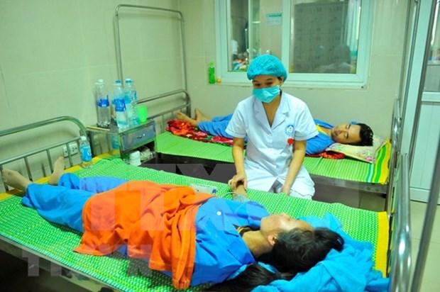 Reportan tres fallecidos por dengue en Vietnam hinh anh 1