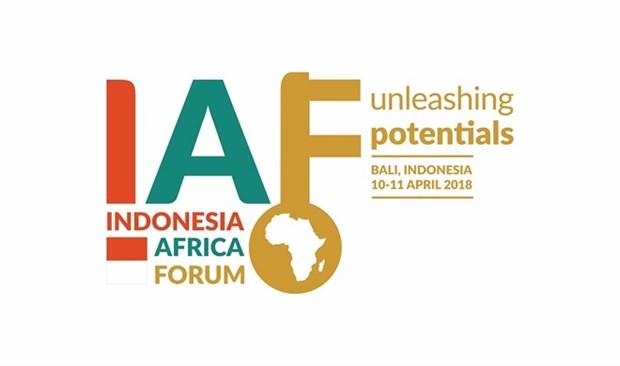 Indonesia interesada en promover cooperacion economica con Africa hinh anh 1