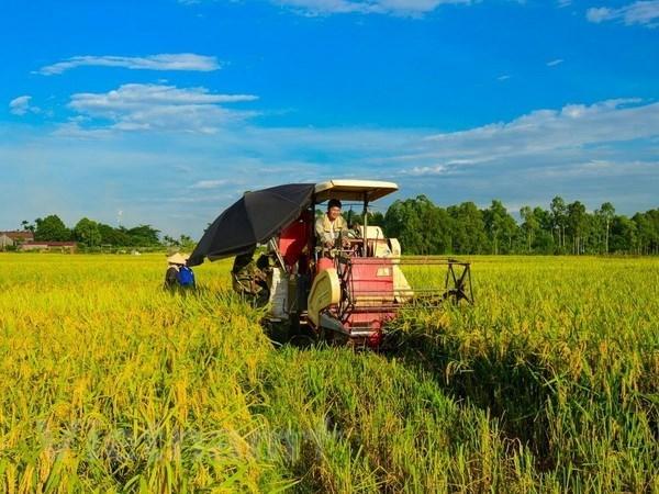 Vietnam aspira a tener 15 mil cooperativas agricolas para 2020 hinh anh 1