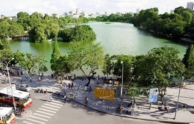 Hanoi aspira a sembrar un millon de arboles para 2020 hinh anh 1