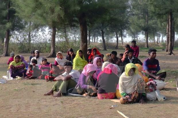 Ministro de Myanmar afirma que repatriacion de los rohingya comenzara pronto hinh anh 1