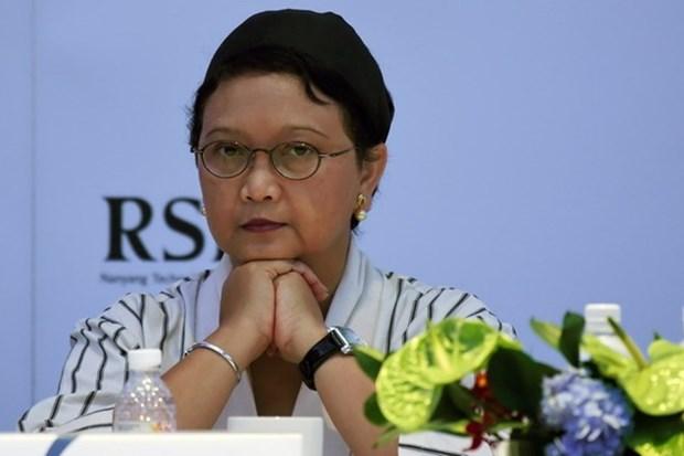 Canciller indonesia llama a las partes a respetar al derecho internacional hinh anh 1