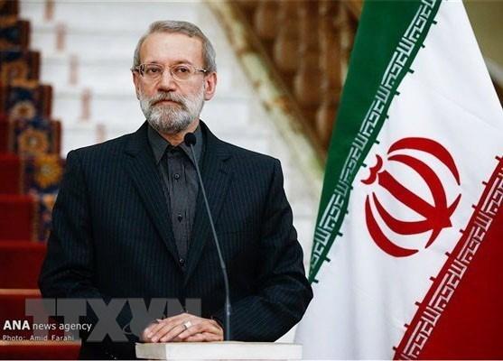 Presidente del Parlamento de Iran inicia visita a Vietnam hinh anh 1