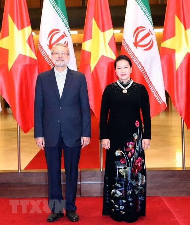 Vietnam e Iran aspiran a intercambio comercial de dos mil millones de dolares hinh anh 1