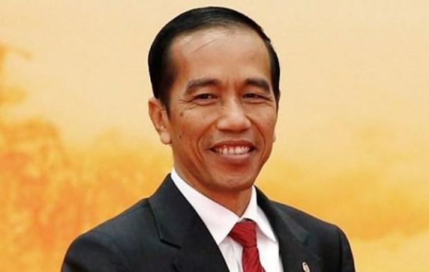 Indonesia prioriza el rol de los consultores de religion, afirma Presidente hinh anh 1