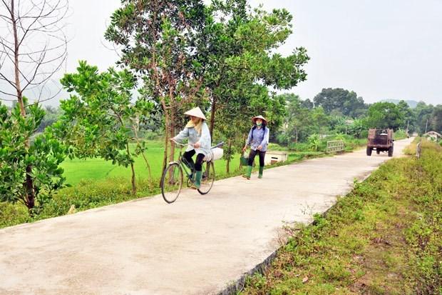 Provincia vietnamita despliega politicas de apoyo a minorias etnicas hinh anh 1