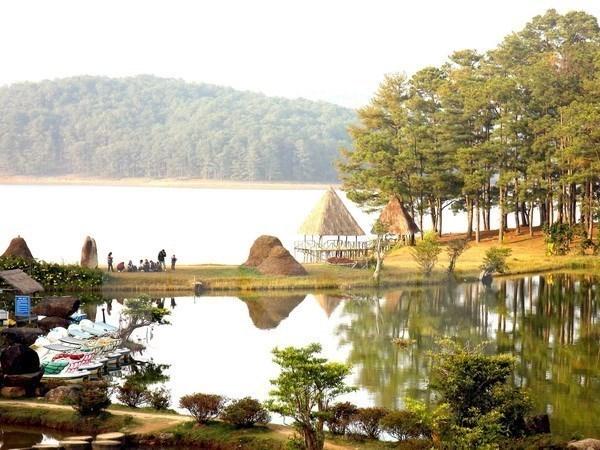 Aumenta 10,3 por ciento numero de turistas a Lam Dong hinh anh 1