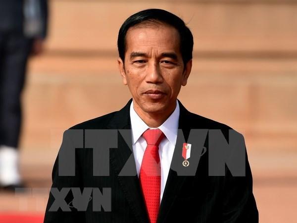 Gobierno de Indonesia revisa proyectos estrategicos nacionales hinh anh 1