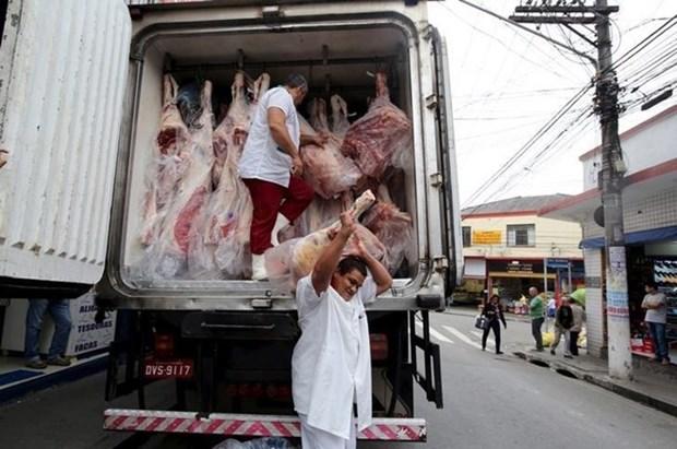 Brasil reanudara exportaciones de carne a Indonesia hinh anh 1