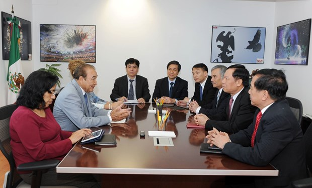Vietnam y Mexico intercambian experiencias en materia de informacion al exterior hinh anh 1