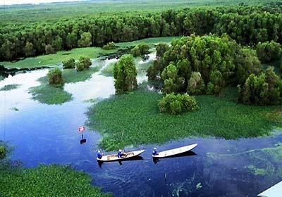 Adoptan en Vietnam medidas para preservar la biodiversidad de parque nacional hinh anh 1