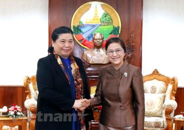 Vietnam y Laos refuerzan los lazos legislativos hinh anh 1