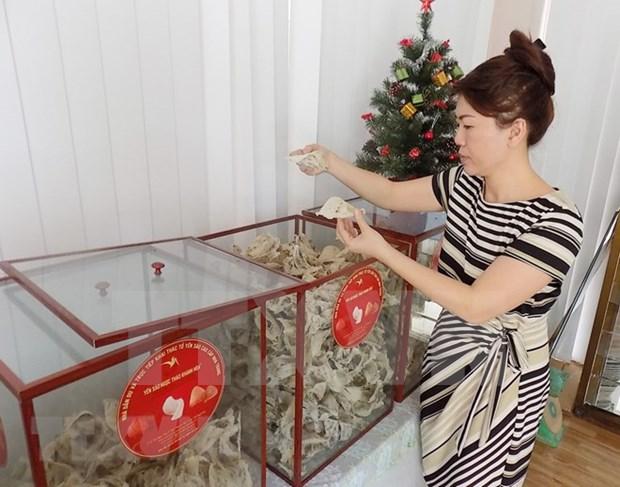 Vietnam tiene grandes potenciales para exportacion de nidos de salanganas, segun expertos hinh anh 1
