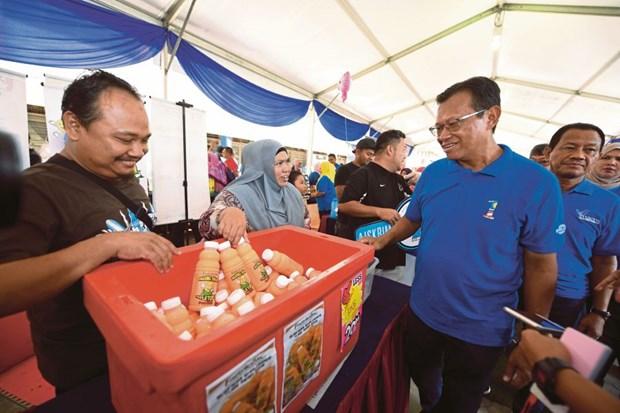 Malasia impulsa modelo de comunidad de cultivo urbano hinh anh 1
