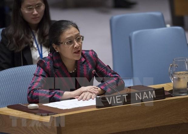 Vietnam exhorta a Consejo de Seguridad de ONU a resolver conflicto israeli-palestino hinh anh 1