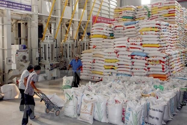 Provincias centrales por producir dos millones 500 mil toneladas de arroz hinh anh 1