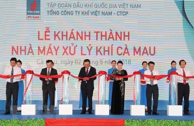 Presidenta parlamentaria de Vietnam asiste a la inauguracion de planta procesadora de gas en Ca Mau hinh anh 1