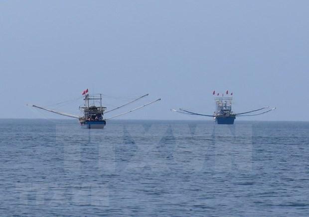 Despliega Vietnam multiples medidas contra la pesca ilegal hinh anh 1