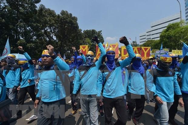 Indonesios demandan al Gobierno limitar contrato de trabajadores extranjeros hinh anh 1