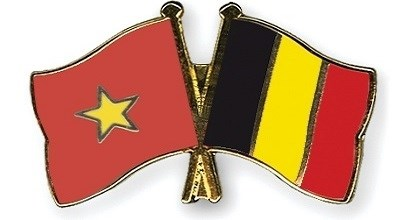 Delegacion de 65 empresas belgas llegara a Vietnam para buscar socios hinh anh 1