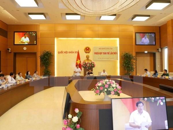 Consejo de Asuntos Etnicos del Parlamento vietnamita pasa balance a su trabajo hinh anh 1