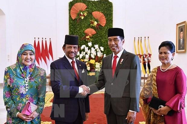 Indonesia y Brunei por fortalecer cooperacion multifacetica hinh anh 1