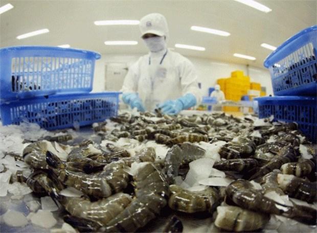 Vietnam apunta obtener 4,8 mil millones de dolares de exportaciones de camarones hinh anh 1