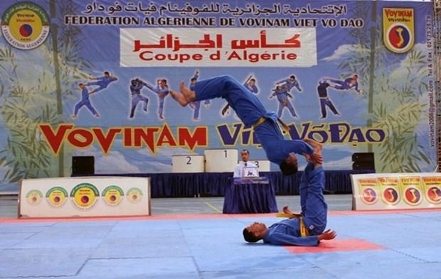 Concluye en Argelia competencia de arte marcial vietnamita Vovinam hinh anh 1