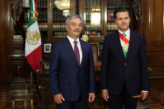 Presidente de Mexico se compromete a impulsar relacion integral con Vietnam hinh anh 1
